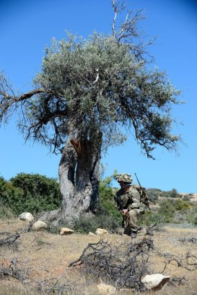 Read related blog: https://britisharmyblog.wordpress.com/2014/06/10/a-brief-pause-for-thought/